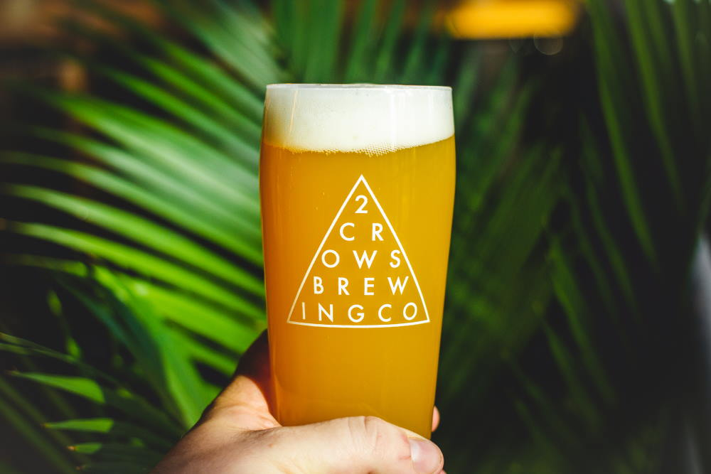 A full glass of beer being held by a hand in front of some palm plants. The green makes the gold in the glass pop.